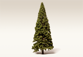 Conifers Naturalistic Green