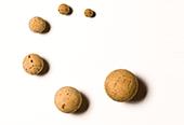Cork Balls