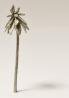 Palme Zinnguß h =  62
