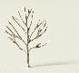 Laubbaum Zinnguß h =  25